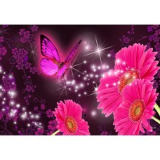 Diamond painting BUTTERFLY PINK  30 x 40 cm.